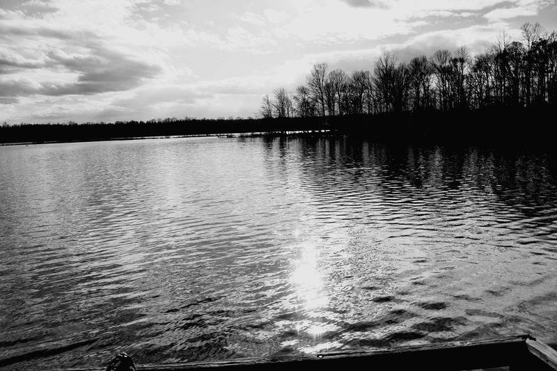 Lake. Lakeside Lake Waterfront Lakeshore Lakescape Lake View Lakes  Black And White Blackandwhite Blackandwhite Photography