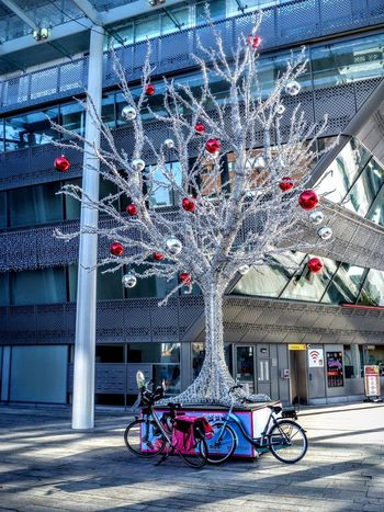 Getting ready Bike Pushbike Bicycle Architecture Almere Stad Shopping ♡ Holland❤ Walking Christmastime Christmas Lights Xmass Xmasstree Gifts Happiness Christmas Tree Festive Season