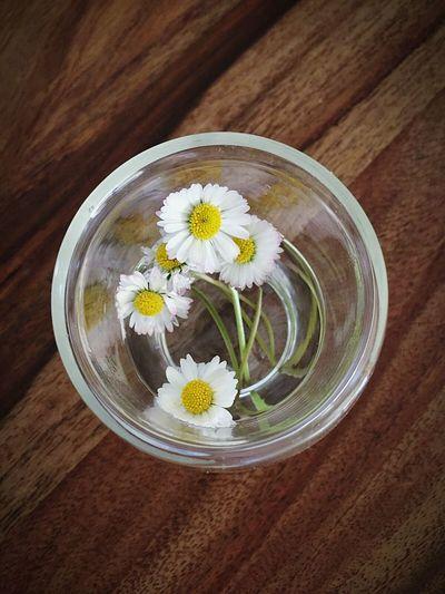 FeteDesMeres Fleurs Jaune🌻 Simple Happy Beautiful Nature Love