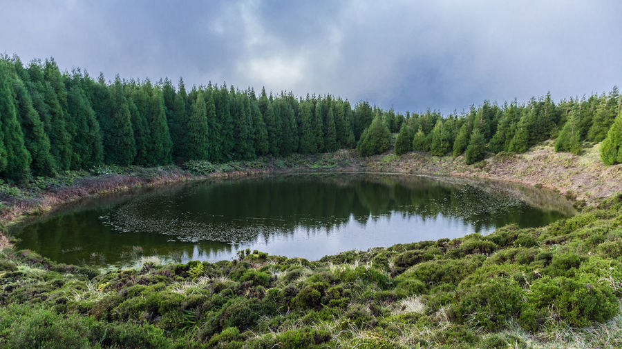 Pau pique lagoon surrounded by green pine forest located on sao miguel, azores, portugal.