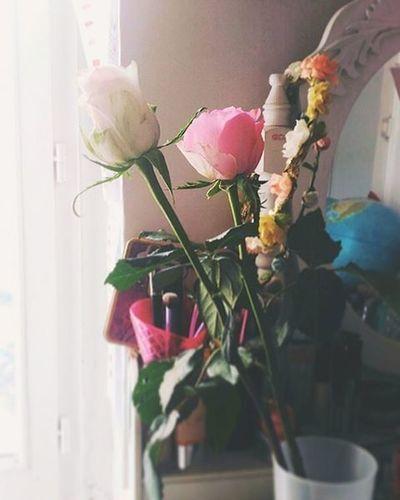 500 Followers -2 ! Allez allez bientôt la surprise 😍 En attendant moi je trouve quelques avantages à être handicapée hihi 😇 Soon Followme Frenchblogger Blog Blogolyon News Surprise Gift Flowers Beautiful Thanks