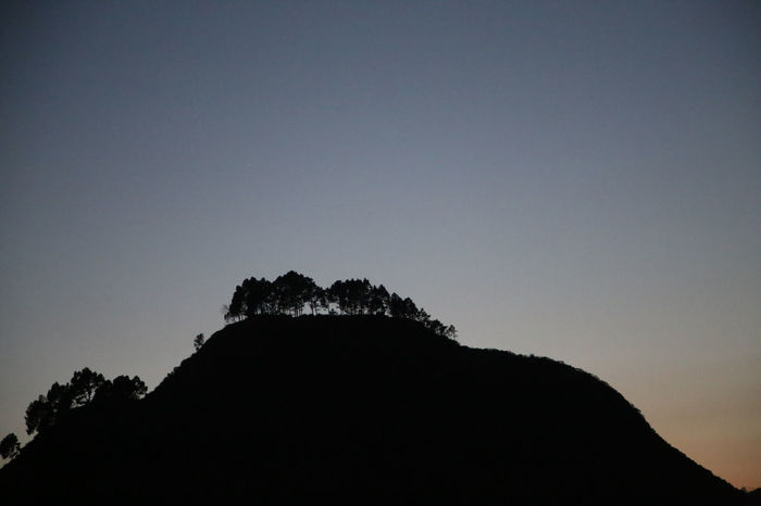 Bandipur Silhouette_collection Silhouettes Silhouette Silouette & Sky Sillouette Tress Awkward Fairytales & Dreams