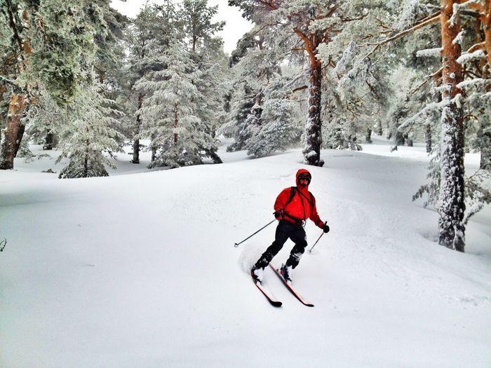 Así Da Gusto Empezar La Semana Laboral #powder  #esquídemontaña #skimountaineering #skimo #mountain #amanecer #sunrise #cotos #peñalara #gasss #training #ilovemountain #dynafit #welovemountains #snowstorm #powder  #beforework