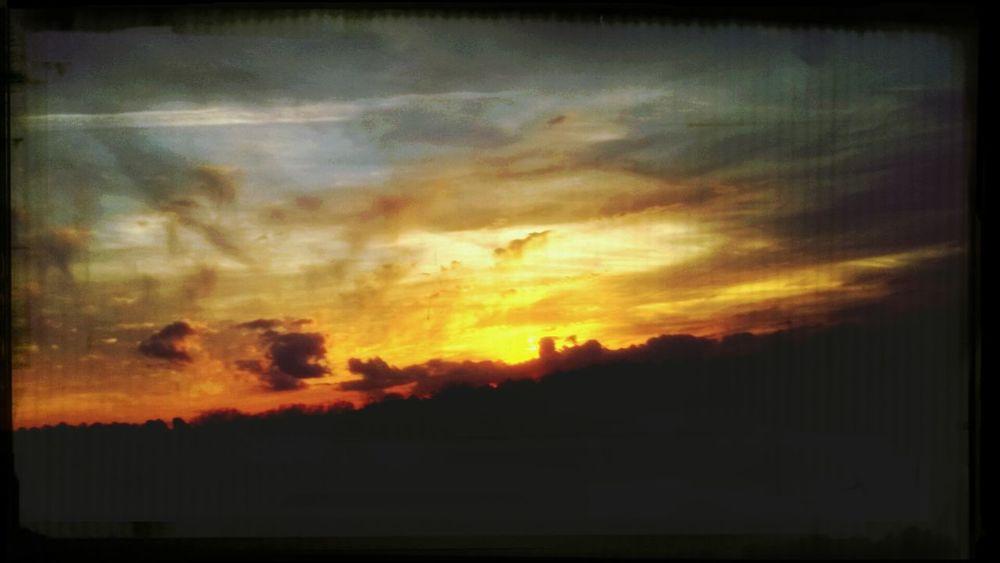 Look Up And Thrive Aubergine Dream Tangerine Dream Dreamy