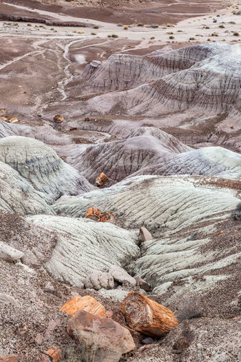 Petrified wood and colourful rock formations, in the painted desert, in arizona