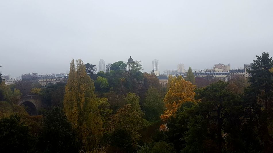 Buttes-Chaumont Autumn Paris, France  Nature Dark Sky Cloud - Sky Yellow Leaves Morning