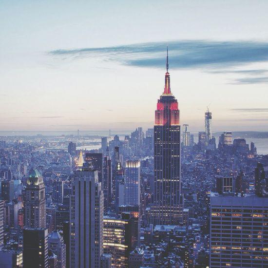 New York City Landscape Swag