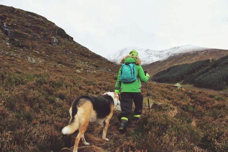 Rear view of person with dog hiking on mountain