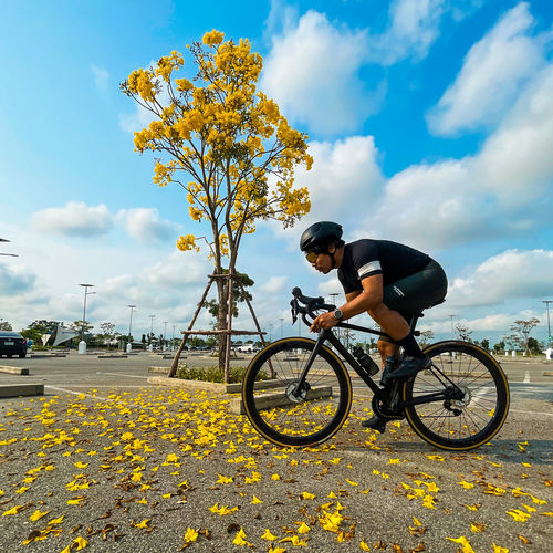 Man riding bicycle on yellow flowering plants against sky