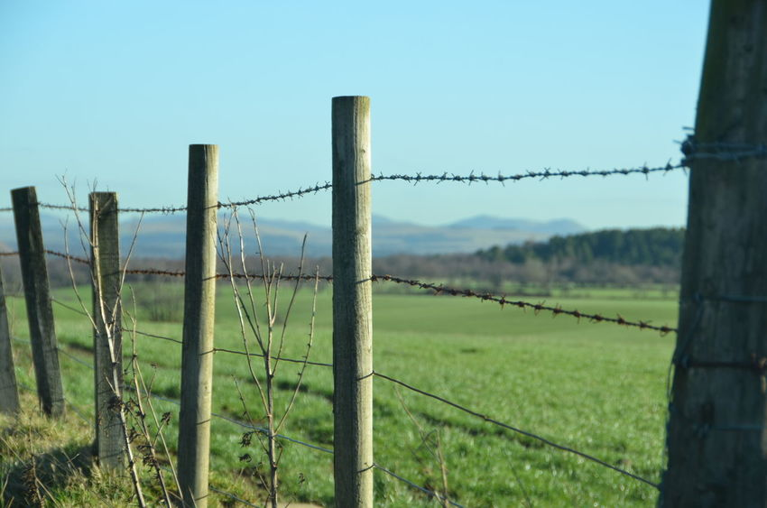 Barbed Wire Boundary Day Farming Fence Field Forbidden Landscape Metal No People Outdoors Protection Razor Wire Rural Scene Safety Scenics Scotland Scotland 💕 Security Sky
