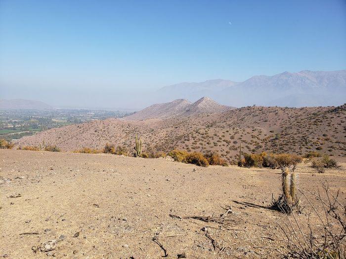 Desert Clear