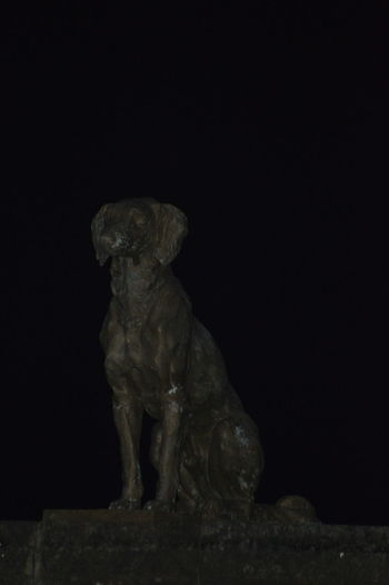 Statue Of A Dog Waghya Pet Of Chatrapati Shivaji Maharaj Raigad Raigad Fort Maharashtra India Memorial Dog Name Waghya