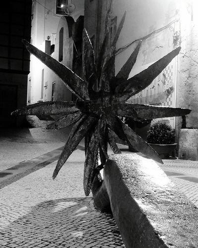 Steel Flower Black & White Night Photography Black And White Photography Street Photography