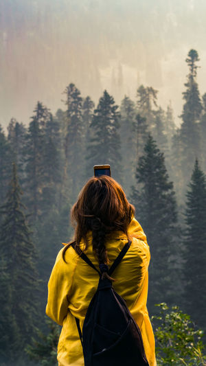 wildfire at Canada 50mm Trees Nature Portrait Yellow Landscape Mountain Wilderness Area Tree Adventure Forest Hiking Winter Exploration Pine Tree Rear View Wilderness