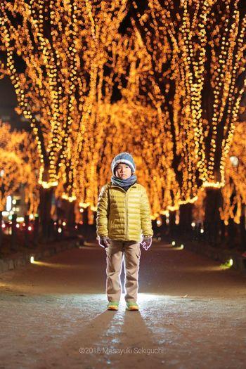 仙台光のページェント イルミネーション ストロボ Portrait Sendai-shi