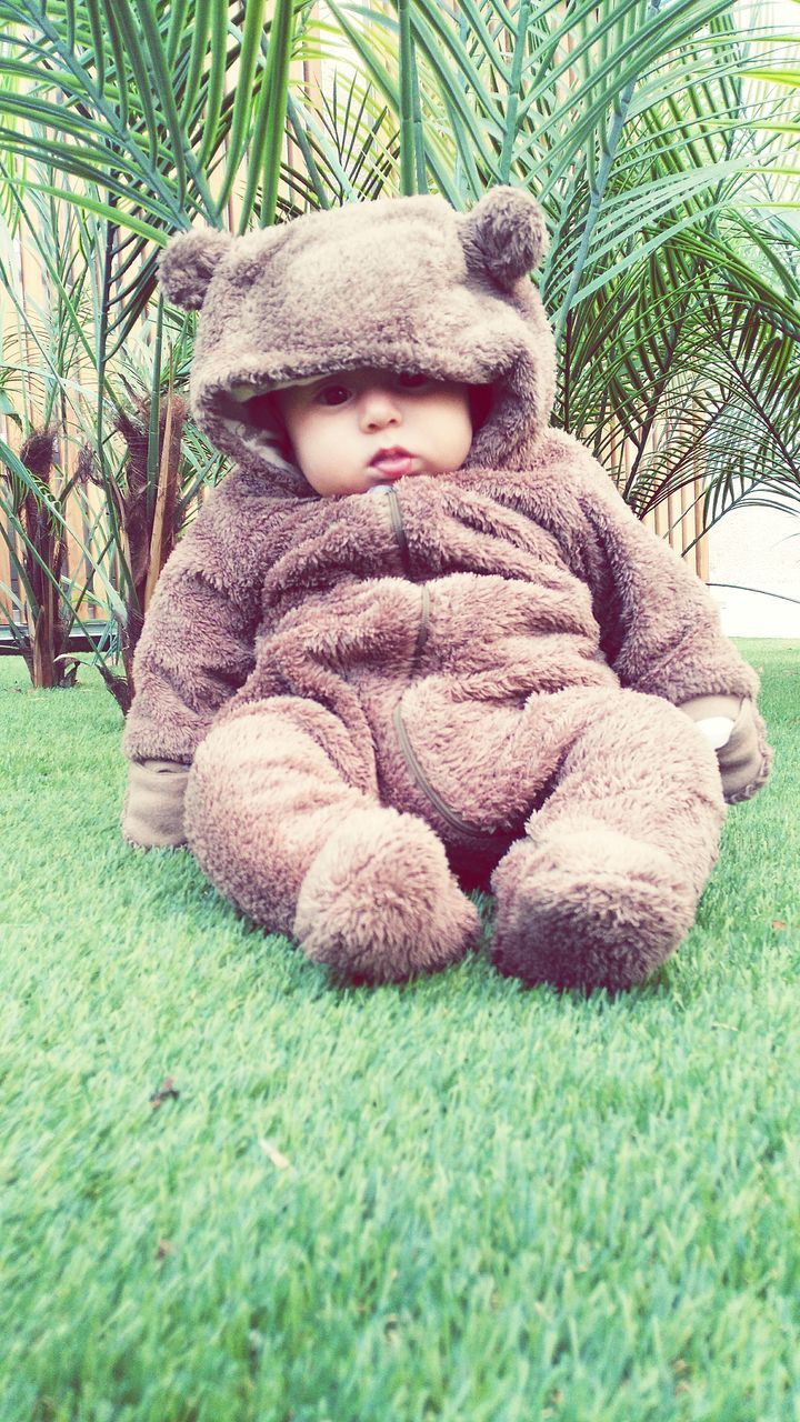 childhood, teddy bear, stuffed toy, one person, day, sitting, grass, indoors, close-up, people