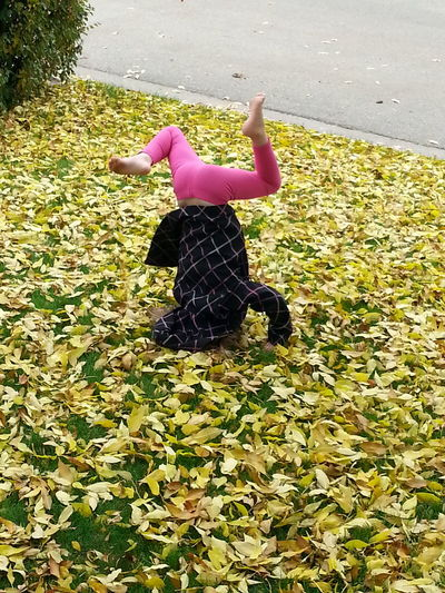 Cool Pic Beautiful Fall Day Yellow Leaves Head Stand Pink Pants Bare Feet Lawn Playtime Fall Fun Spruce Grove, Alberta Leaves Childhood Children Only Child Posing