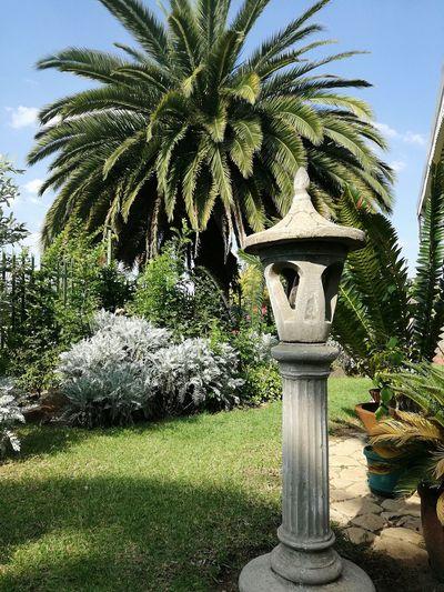 Houses garden