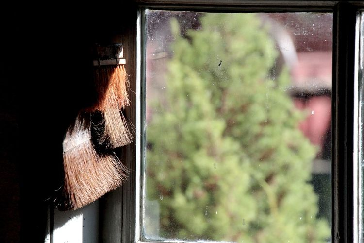 Close-up of old paintbrush by glass window