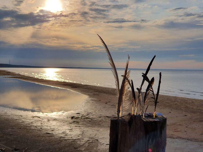 The Baltic Sea,