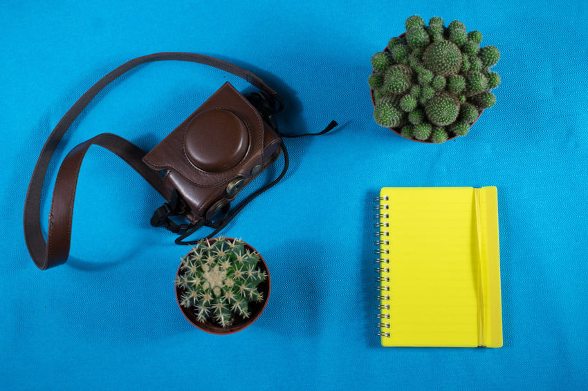Indoors  Directly Above High Angle View Table Studio Shot No People Close-up Day Notebook Camera - Photographic Equipment Camera Bag Leather Bag Cactus Plant Desk Desks From Above Yellow Color Blue Background Full Frame Ready To Go Text Space Notebook Paper Work Taste Of Travel Fat Plants