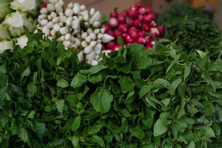 Greenery at a market stall Day Food Food And Drink Freshness Green Color Healthy Eating Large Group Of Objects No People Reddish Vegetable