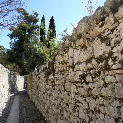 Close-up Detail of Ancient Stone Wall and Stone Pavement Background Ancient Architecture Ancient Civilization Day Footpath As Landscape Geometry Landscape Leading Moss Narrow No People Old Pathway Pebble Road Rock Rock - Object Rough Ruined Stone Wall Streetphotography Textured  Tree Wall - Building Feature