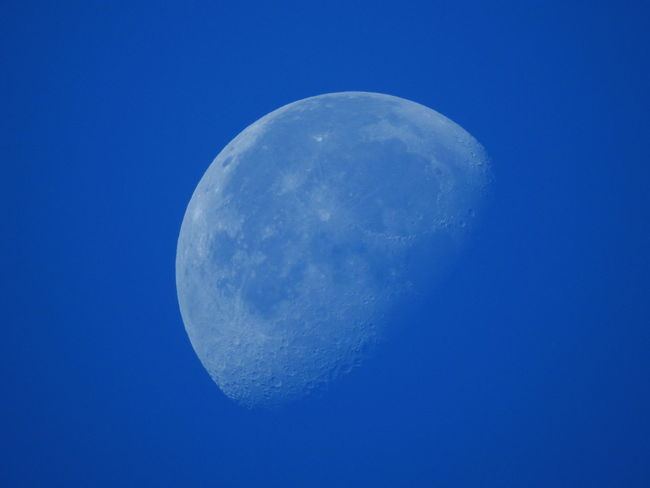 Astronomy Beauty In Nature Blue Clear Sky Close-up Copy Space Half Moon Low Angle View Luna Moon Moon Surface Měsíc Nature Night No People Outdoors Planetary Moon Scenics Sky Space