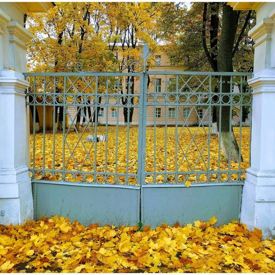 транспорныезарисовки осень Новослободская
