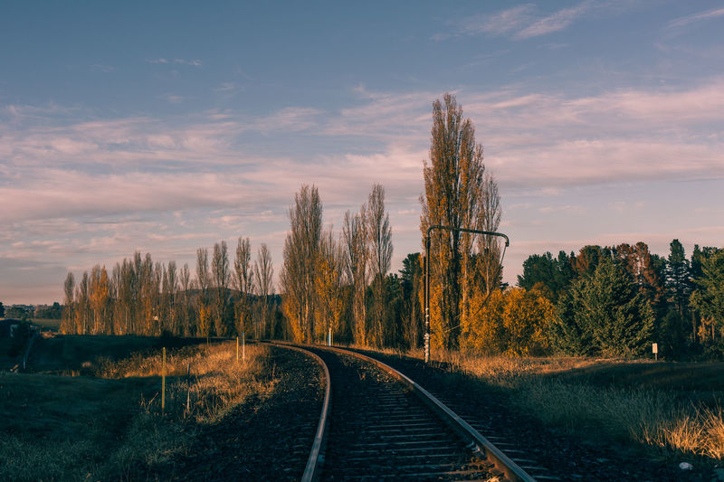 Sky Tree Plant Rail Transportation Cloud - Sky Nature Transportation Sunset Beauty In Nature Track Railroad Track No People Scenics - Nature Direction Tranquil Scene Tranquility The Way Forward Non-urban Scene Outdoors Landscape