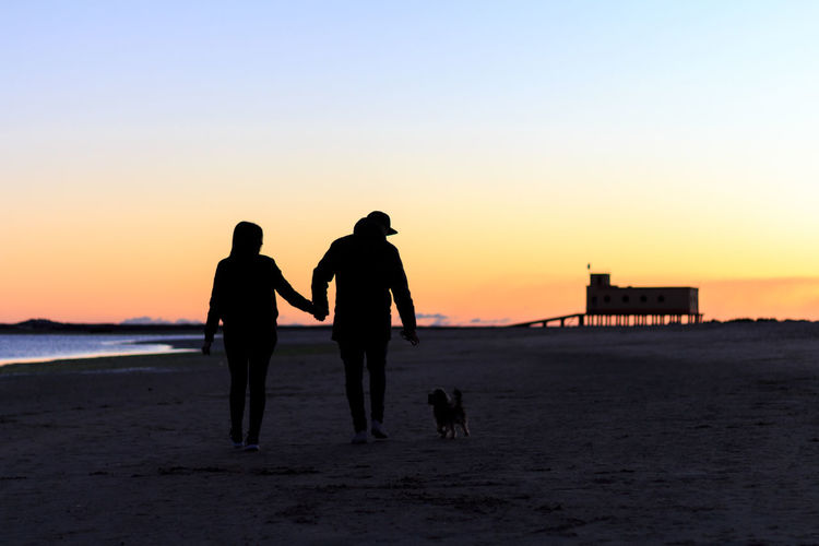 Silhouette Couple With Dog Walking On Beach At Sunset