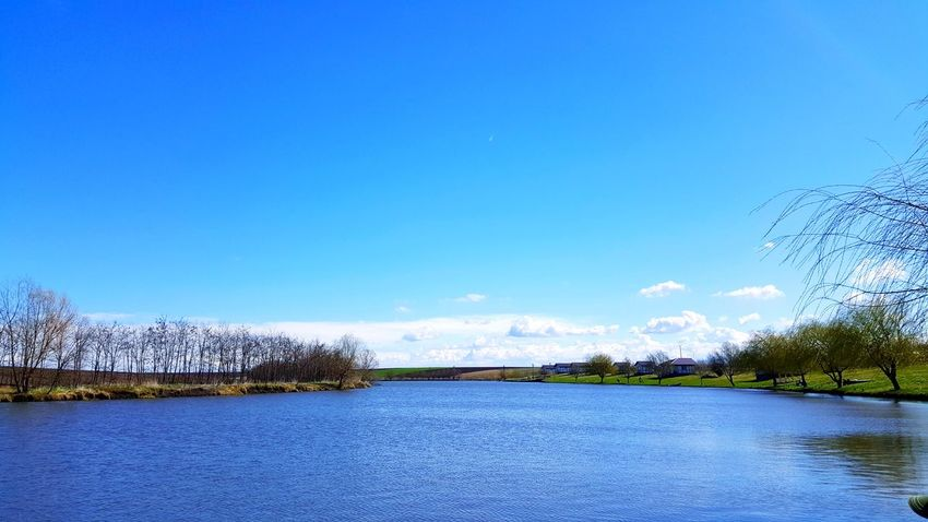 Outdoors Day Beauty In Nature No People Clear Sky Landscape Lake Nature Water Blue Sky Tree Trees And Water Pace View Moment Wait Relaxing Time Silence Beauty In Nature Grass Cloud - Sky Getting Inspired Lost In The Landscape