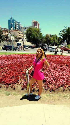 Flores Nature Vacaciones AñoNuevo 2015 Viña Del Mar Chile♥ Hi!
