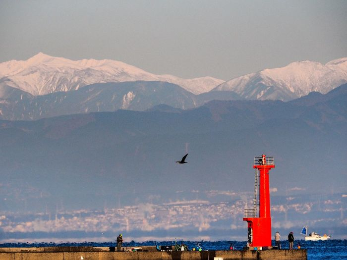 Compression effect of telephoto lens. Although it can be seen near, the distance from the lighthouse to snowy Japan's Minami Alps is more than 70 kilometers apart. 300mm 圧縮効果 Compression Effect 圧縮効果 Japan Shizuoka LEICA DG VARIO-ELMAR 100-400 OM-D E-M5 MarkⅡ Olympus Blue Red Lighthouse Seascape Sea The Week On EyeEm Snow Beauty In Nature Nature Mountain Mountain Range Sky Animal Themes Scenics Outdoors Day One Animal Bird