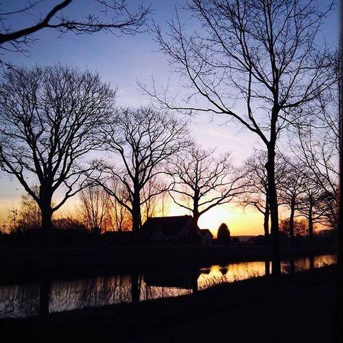 Sunrise Niceview EpicView Sun Morning Water Tree Farm Noblackandwhite VSCO Vscomoment Vscocam Vscophile