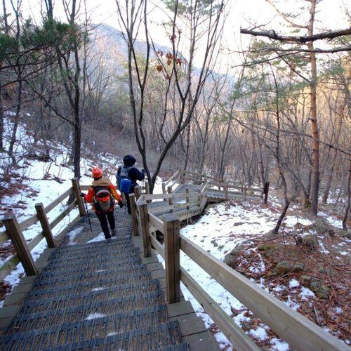 . Two is better than one Korea Seoul_korea Fujifilm S5pro mountain forest trees people two instagood instamood picoftheday robin_mt robin_theme 관악산