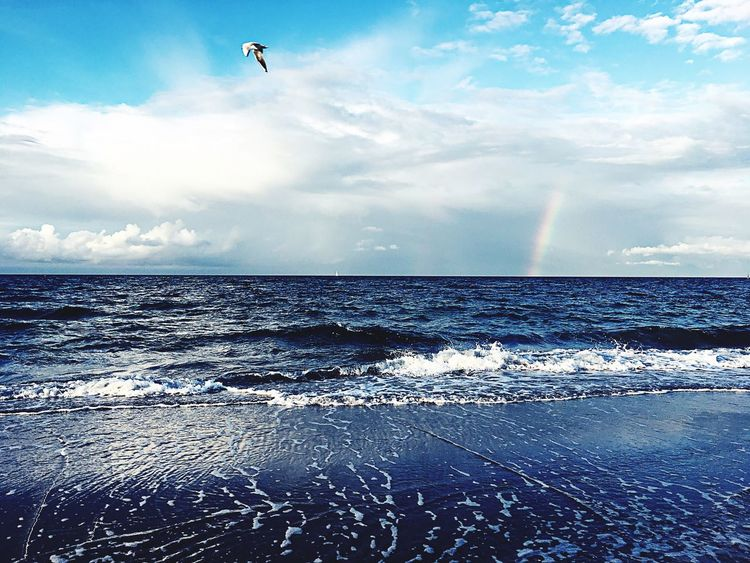 Regenbogen Strand Sommer Sonne Sonnenschein ❤ Wind Sea Water Horizon Over Water Beauty In Nature Sky Scenics Nature Blue Flying Day Tranquility Tranquil Scene Cloud - Sky Outdoors No People Animal Themes Wave Parachute