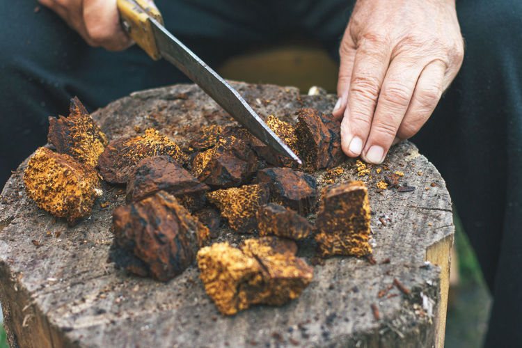 The hands of an elderly man are cut with a knife healthy pure  natural chaga mushroom