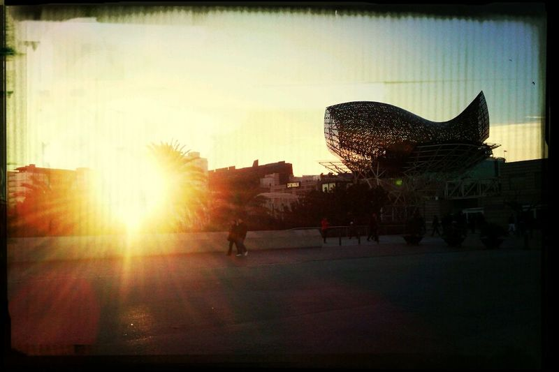 Beach Afternoon Landscape Barcelona Atardecer Villa Olimpica