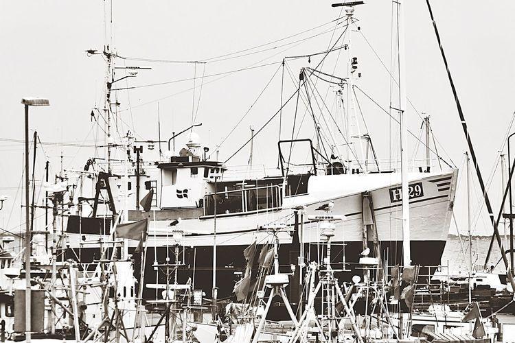 Denmark 🇩🇰🇩🇰🇩🇰 Fishing Boat Fresh Food Fresh On Eyeem  Quota Nautical Vessel Transportation Mode Of Transport Moored Boat Mast Sea Harbor Water Clear Sky Ship Trawler Sailboat Dock Day Nature No People Sky Passenger Ship Tall Ship