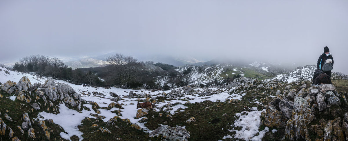 Panoramic Panorama Asturies Asturias Faya Fayeu Hayedo Peñamayor Beauty In Nature Tree Area Trees Wood Bosque Forest Dog Border Collie Niebla Fog Snow Winter Cold Temperature Mountain Tree Outdoors Snowcapped Mountain People Adventure Adult Day