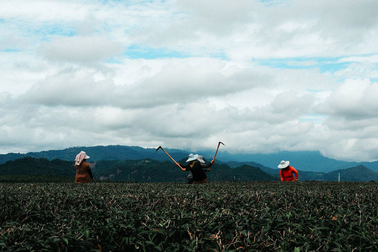 Tea plantation worker Cloud - Sky Sky Field Land Nature Landscape Day Environment Plant Real People Mountain Rear View Beauty In Nature People Leisure Activity
