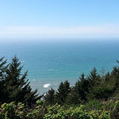 Cape Sebastion Nofilter Picoftheday Oregon Oregoncoast ORC