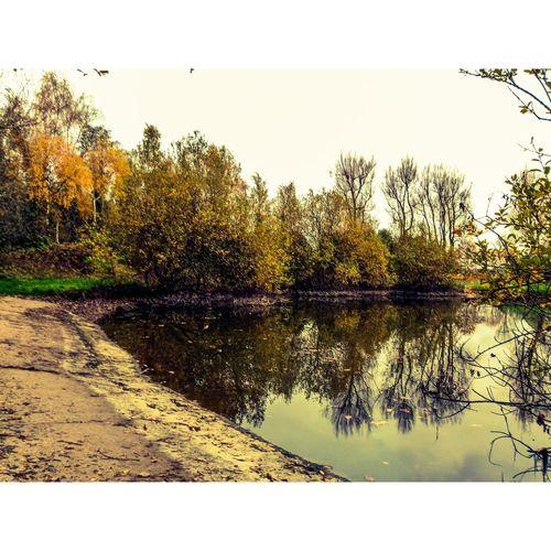 Victoria Park,