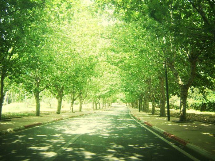 Travel Ifran