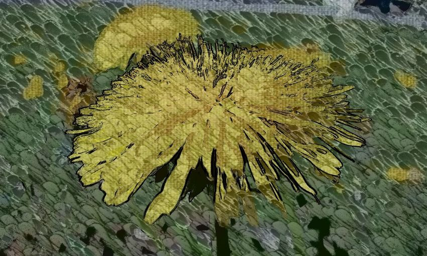 Yellow Textured