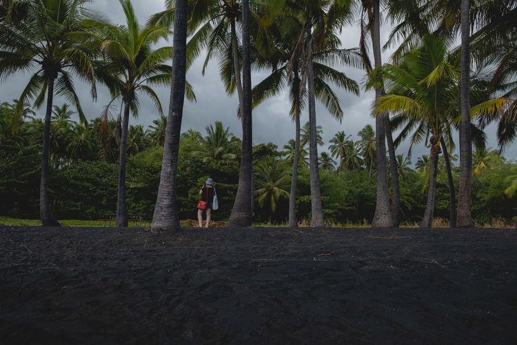 Man walking on palm trees