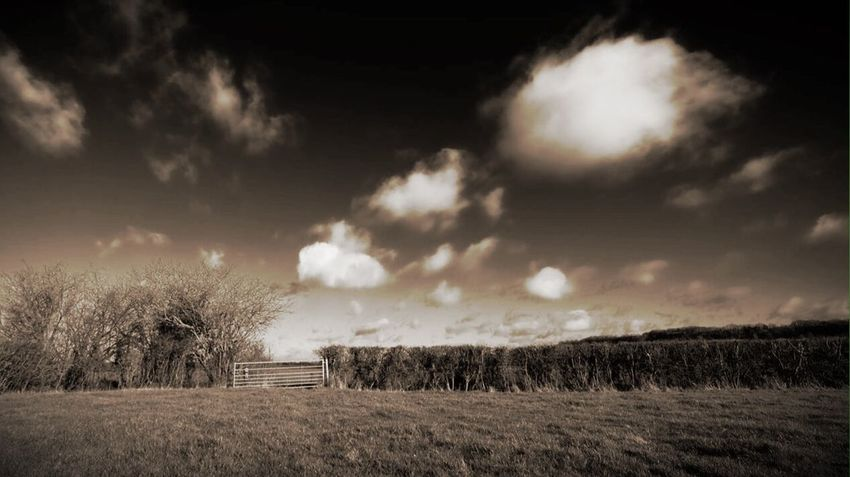 A little hint of color Check This Out Landscape OpenEdit