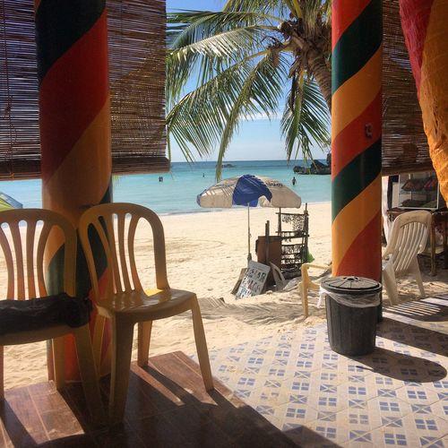 Holiday POV Tropical Affair