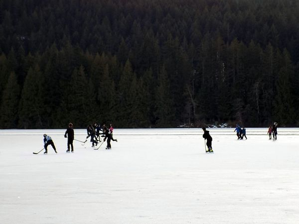 Canada's favorite pastime Winter Snow Cold Temperature Winter Sport People Ice Hockey Hockey Outdoors Tree Nature Day Ice Rink Adult Vancouver Island Canada 2017 Year Skating ✌ Frozen Lake Winter Sport Recreational Pursuit Ice Rink